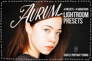 Aurum Studio Lightroom Presets