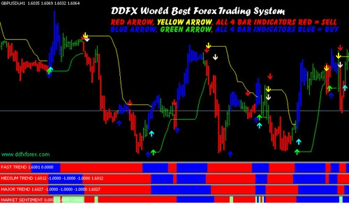 Whats the best forex trading system