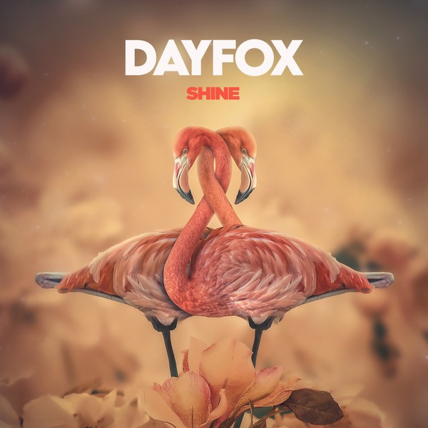 DayFox - Shine (Full Product)