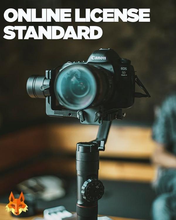 Online License - Standard