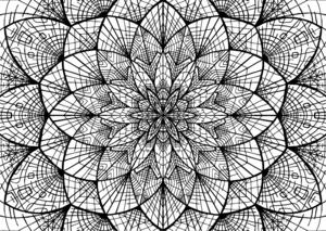 Sacred Geometry Flower design Mandala Coloring