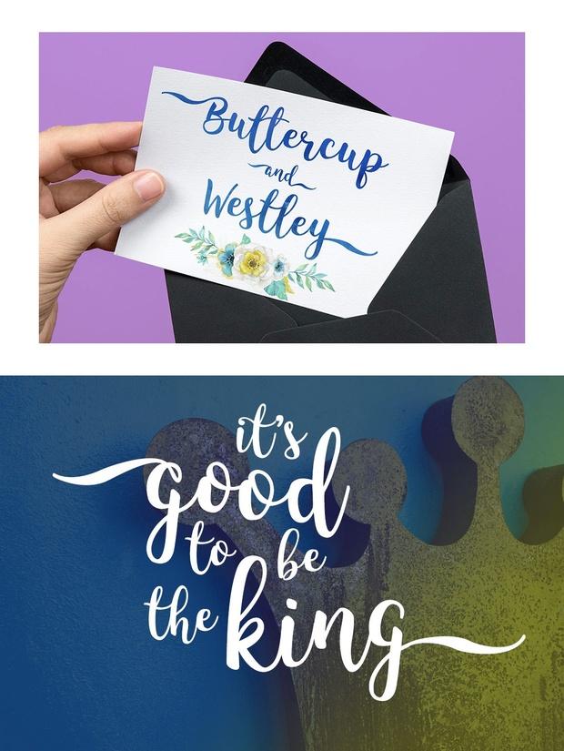 King Basil: a hand-lettered script font!