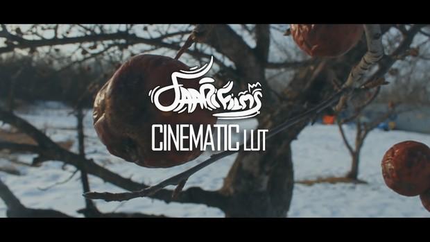 Premiere Pro Snowy Cinematic LUT