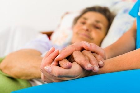 Hospice Segment Report