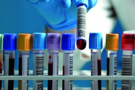Laboratory Segment Report