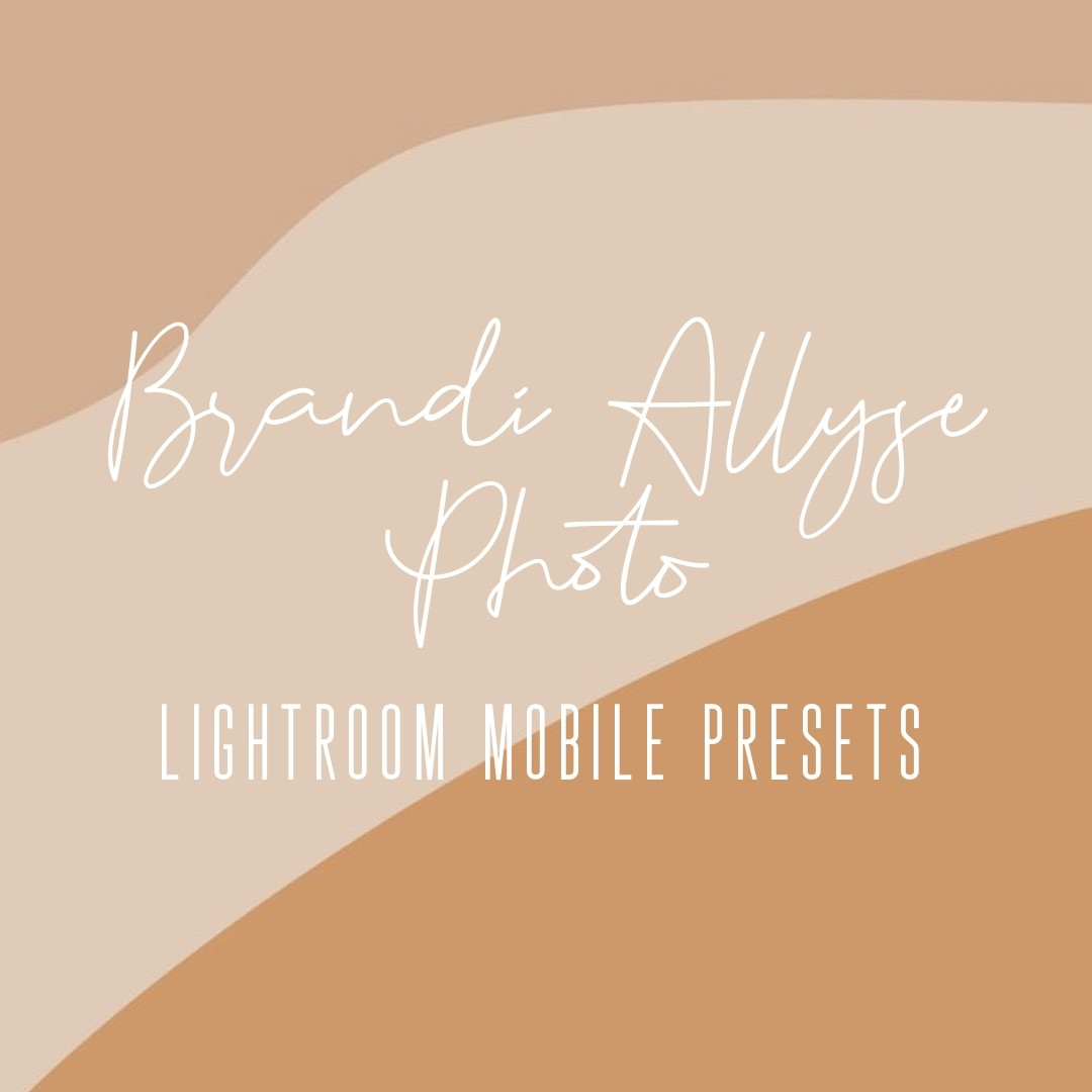 Brandi Allyse Photo Mobile Presets