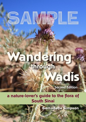 Wandering through Wadis: A nature-lover's guide to the flora of South Sinai - 2nd Edition - SAMPLE