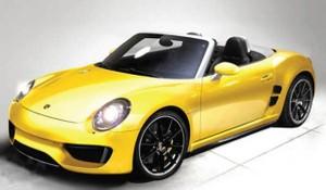 Porsche Boxster 2013 2014 Repair Manual