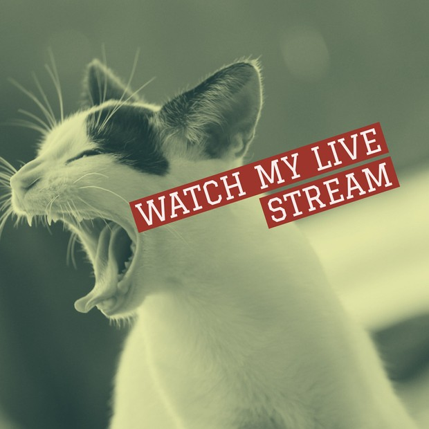 funny cat facebook live stream reminder graphic for so