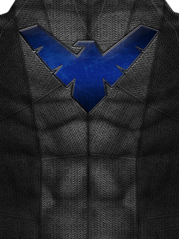 NIGHTWING: DAWN OF JUSTICE STYLE pattern file