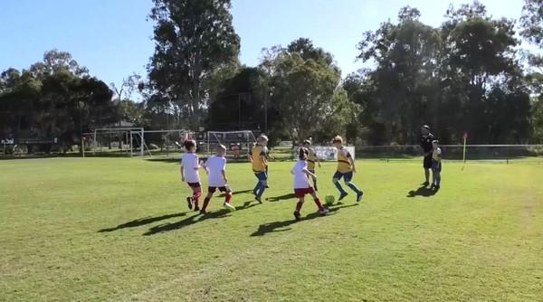 MiniRoos U8 Brighton Bulldogs v Pine Rivers Athletic