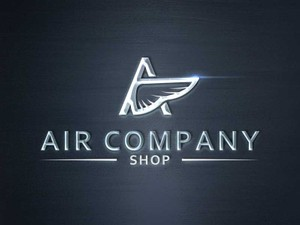 Air/wings company shop logo