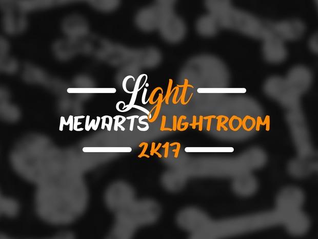 MewArtsLightroom 2k17