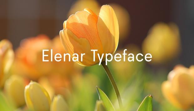 Elenar Typeface