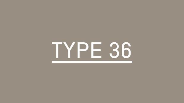 Type-36