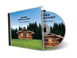 VISUALISERING CD: