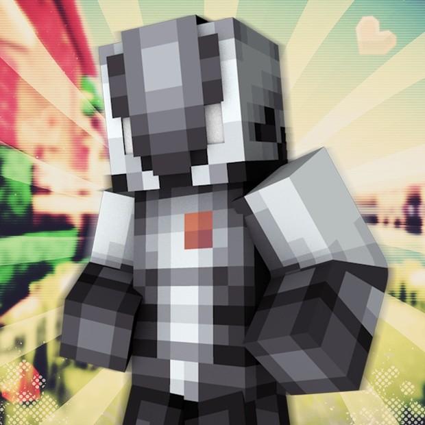 Minecraft: Foto de perfil