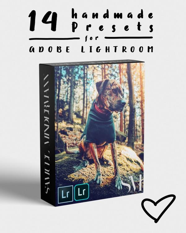 SAMUEL MINDERMANN Preset Pack 01 for Adobe Lightroom