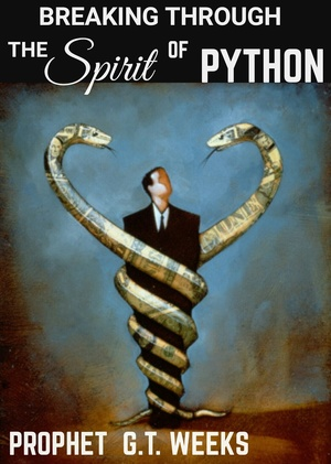 BREAKING THROUGH THE SPIRIT OF PYTHON