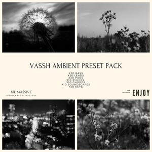 VASSH AMBIENT NI MASSIVE PRESET PACK (100 PRESETS)