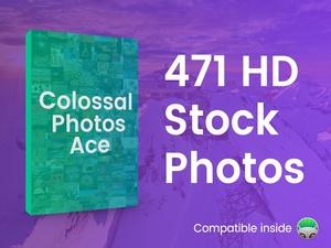 Colossal Photos Ace