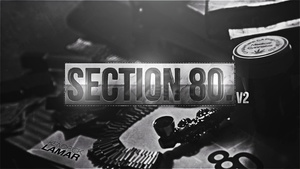 Section 80 V2