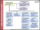 MBE Organization Chart