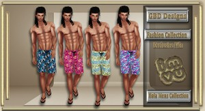 Hola Mens Collection CATALOG ONLY!!