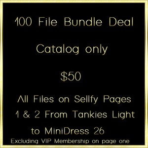 100 File Bundle Deal Plus 2 Free Files CATALOG USE ONLY
