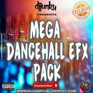 DJJUNKY PRESENTS - MEGA DANCEHALL EFX
