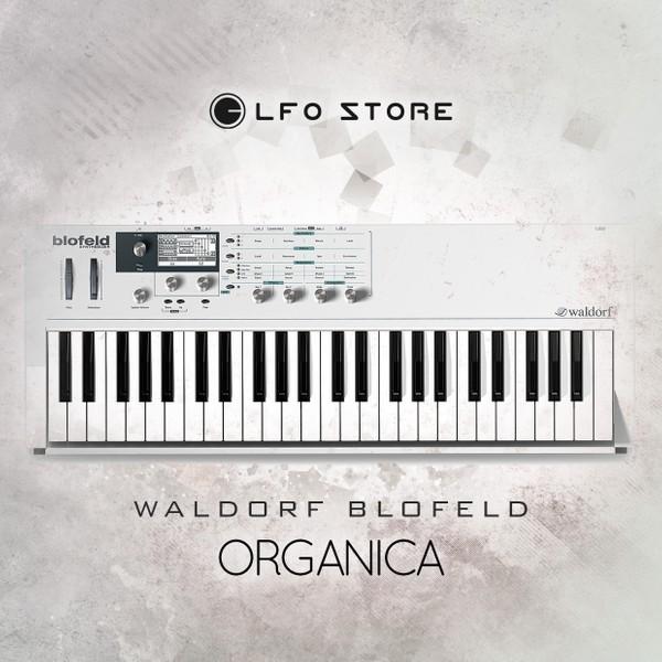 "Waldorf Blofeld ""Organica"" 128 presets"