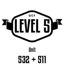 UNIT 532 + 511 Understanding professional supervision practice