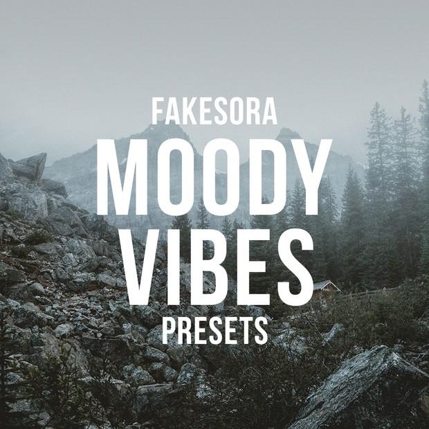 Fakesora Moody Vibes Lightroom Presets