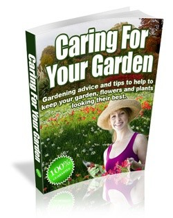 Caring For your Garden