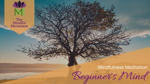 Guided Mindfulness Meditation for Practicing a Beginner's Mind