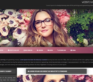 Wordpress Theme / Widget Ready Premade 02