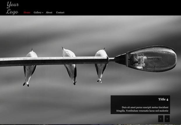 PhotoPlus - Adobe Muse Template