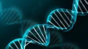Omnilevel DNA Activation