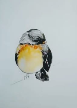 Robin Watercolor Tutorial