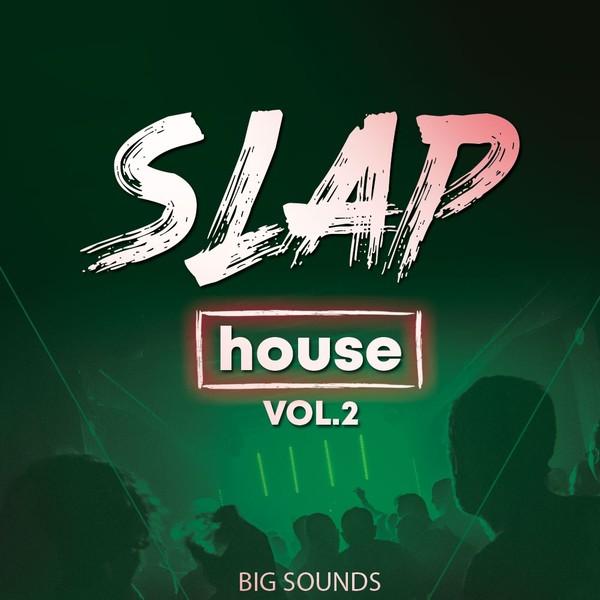 Big Sounds Slap House Vol.2