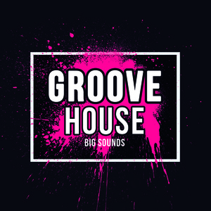 Big Sounds Groove House