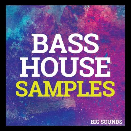 Big Sounds Bass House Samples