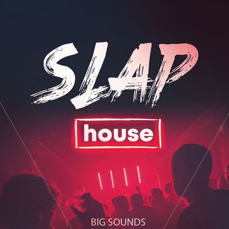 Big Sounds Slap House