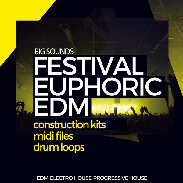 Big Sounds Festival Euphoric EDM