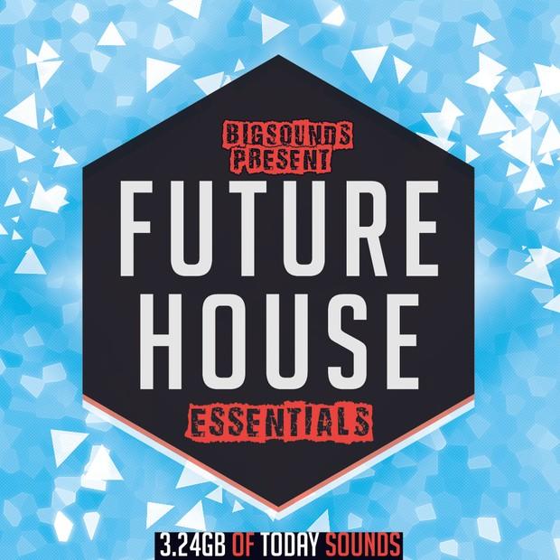 Big Sounds Future House Essentials