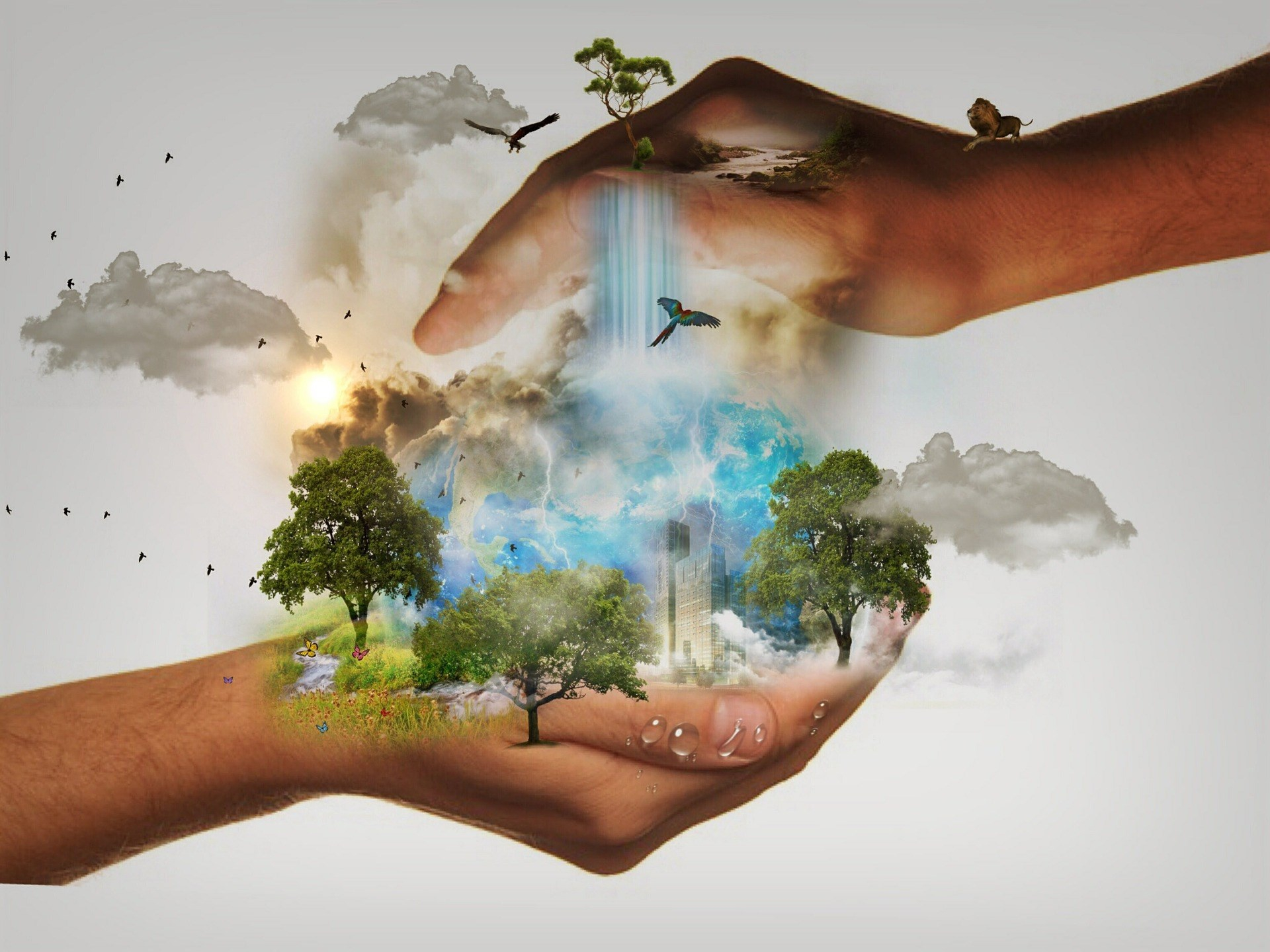 Месяцев, картинки экология и человек
