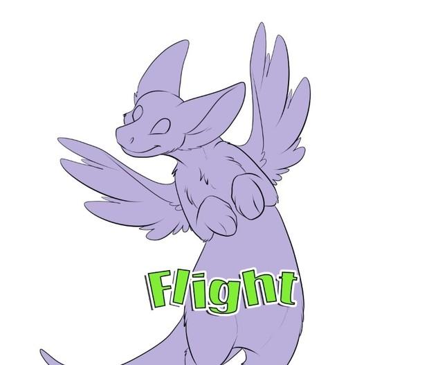 Flight Template