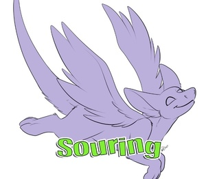 Souring Template