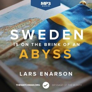 Sweden Is on the Brink of an Abyss (MP3) - Lars Enarson