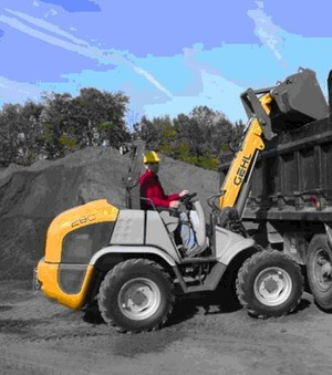 GEHL 280 ALL WHEEL STEER LOADER PARTS MANUAL